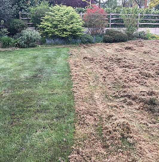 Scarify in Progress