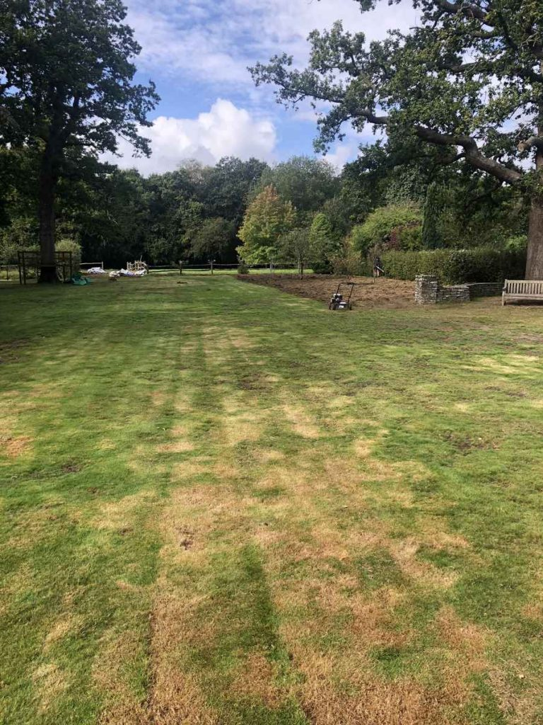 Dorking Lawn in poor condition