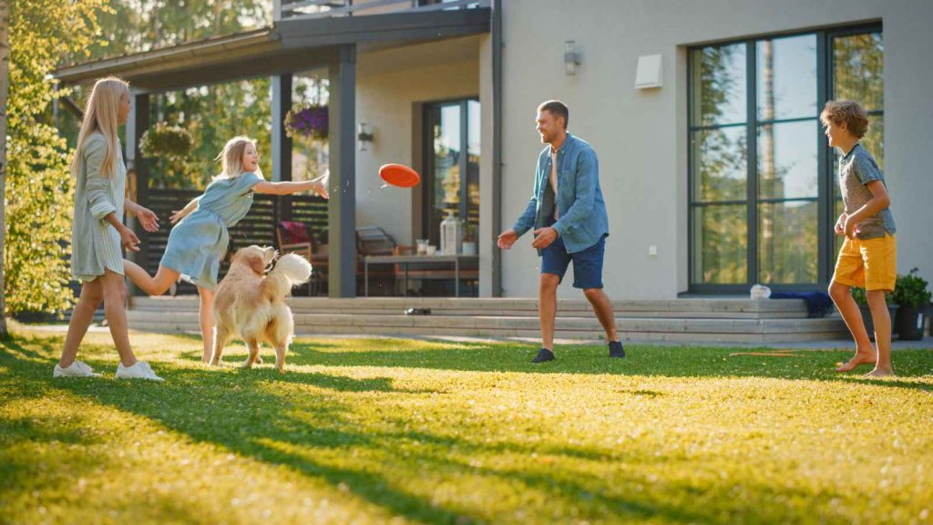Family frisbee on lawn with dog